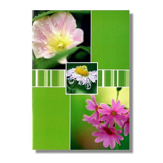 Kapesní fotoalbum 10x15 36 Fandy POLLEN GRAINS zelené s květinami ... a3207b82d3